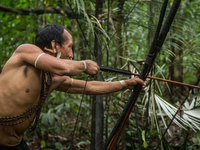 mike-herring-matis-brazil-amazonian-amazon-photography-featured