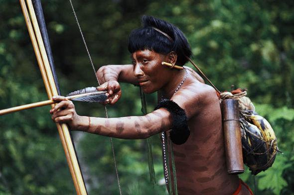 rainforest-amazon-explorer-fawcett-lost-city-of-z-869391
